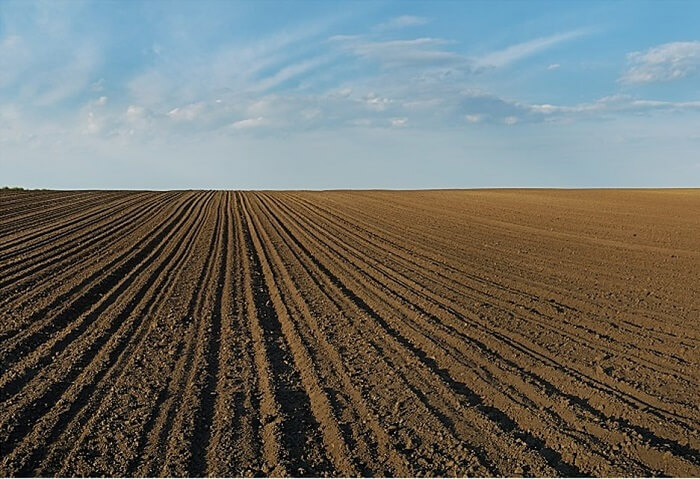Agricultural Soil Analysis
