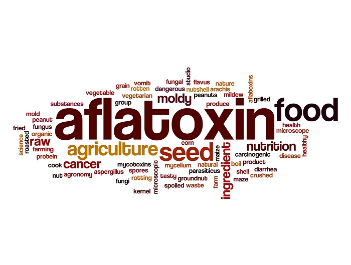 Analysis of mycotoxins in foods