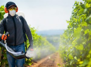 Glyphosate, MRL and Organic Compliance