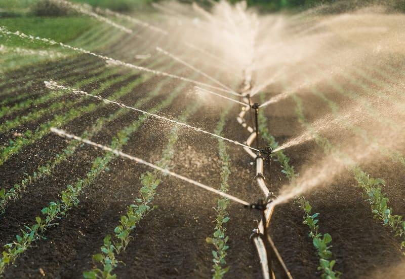 Irrigation Water Quality Analysis