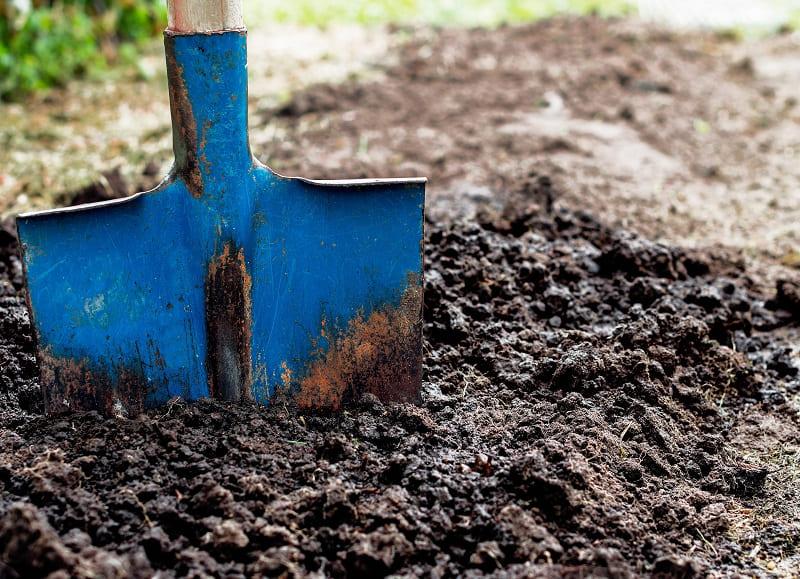 Post-harvest Soil Conservation