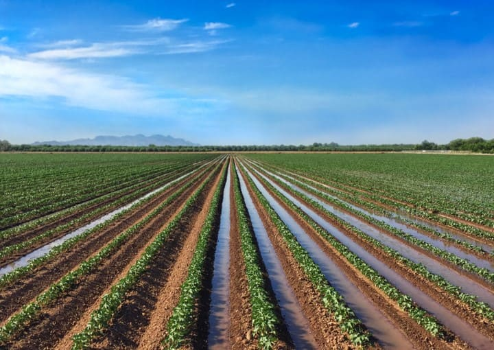 Salinity in Water Irrigation Systems