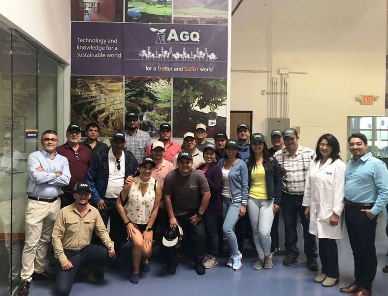 South Central American growers